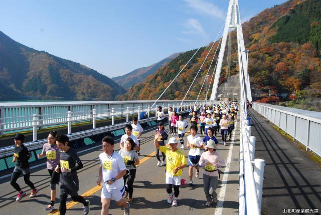 【2020年度中止】丹沢湖ハーフマラソン大会