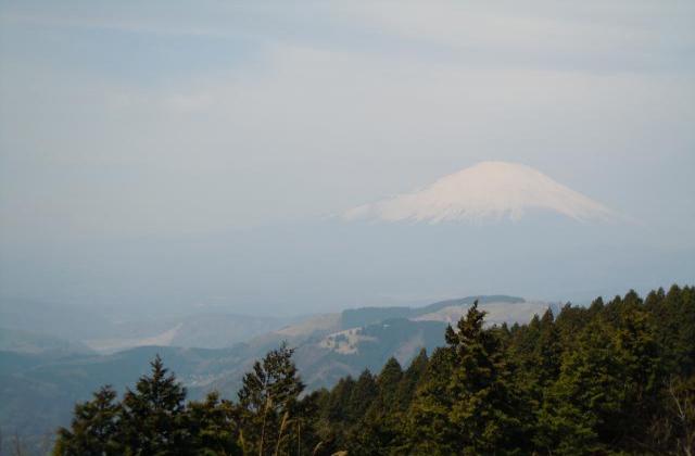 高松山ハイキングコース