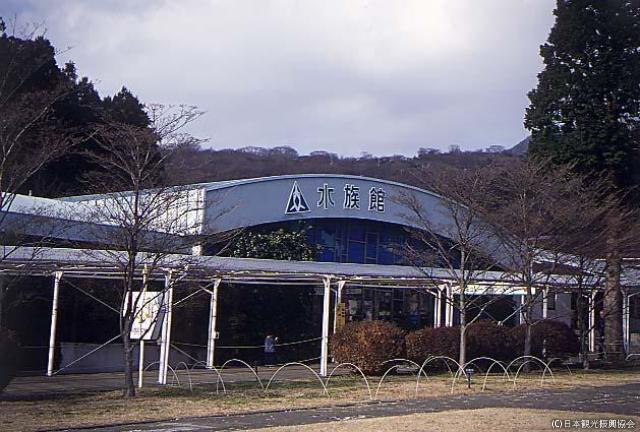 Hakone garden aquarium