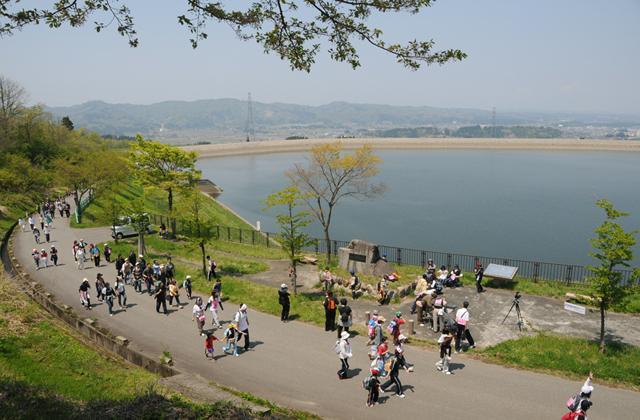 信濃川河岸段丘ウォーク