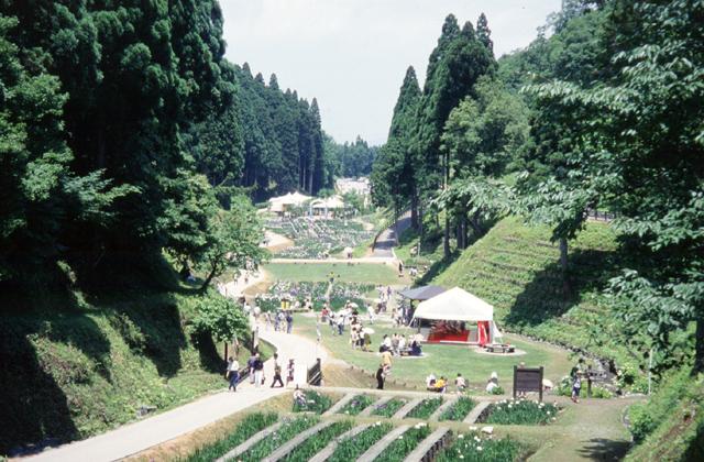 県民公園頼成の森