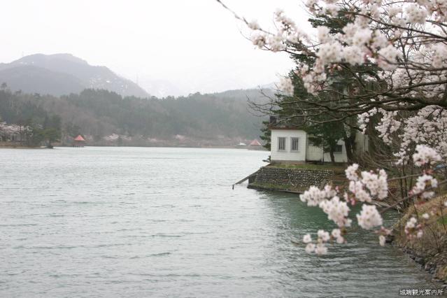 桜ケ池公園