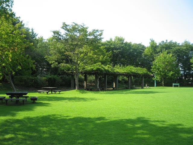 県民公園新港の森
