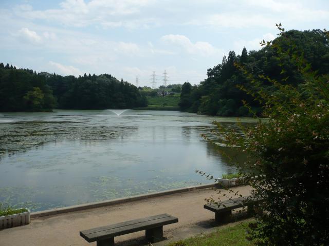 薬勝寺池公園