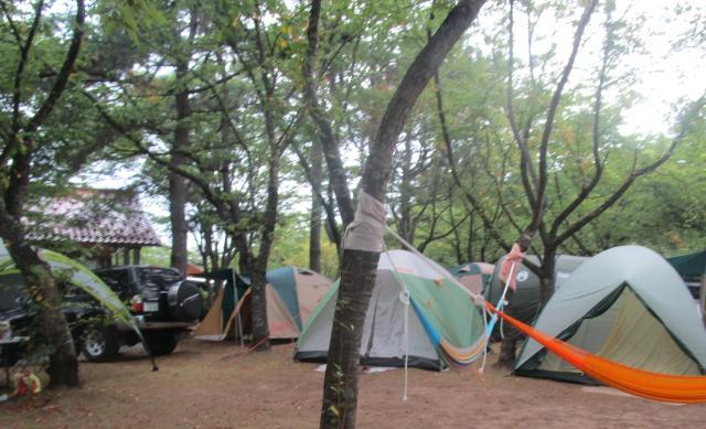 見付園地野営場