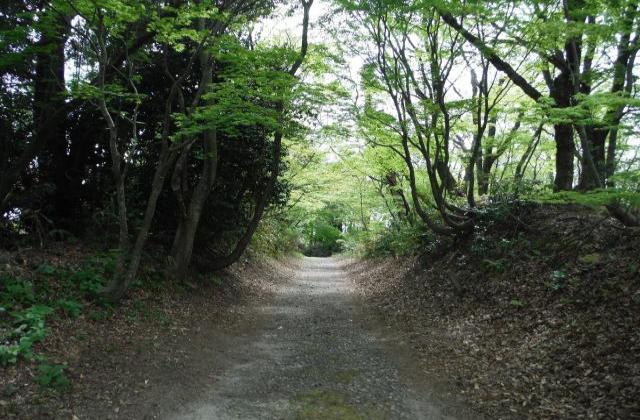 歴史国道「北陸道 倶利伽羅峠」