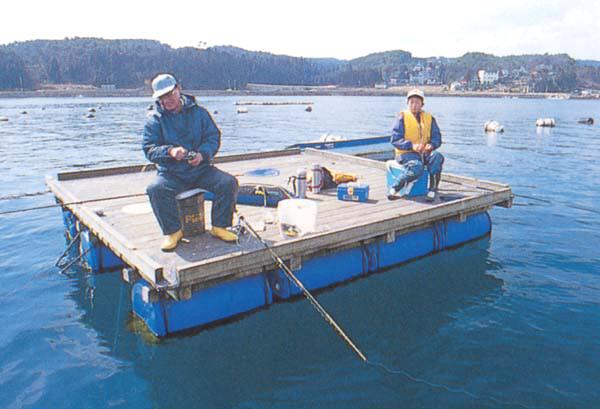 新崎釣り筏