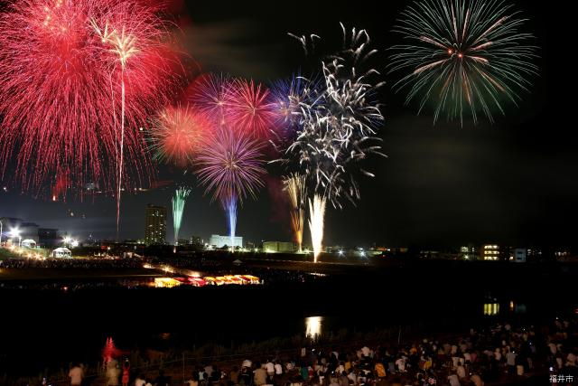 [2020 cancellation] Phoenix, Fukui festival