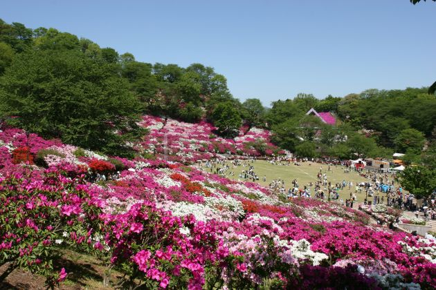 Nishiyama Park★S0101