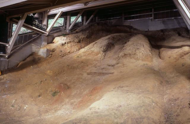 神明ケ谷須恵器窯跡