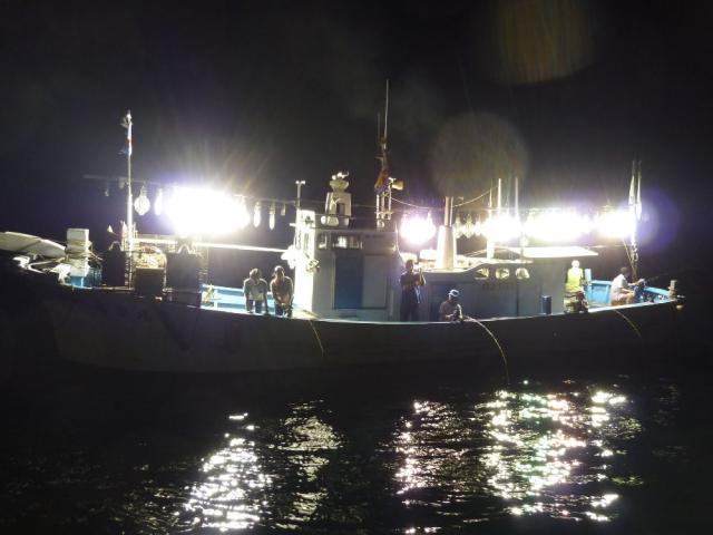 イカ釣り体験(福井県越前町)