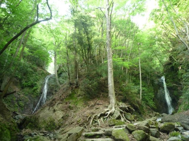 雄滝・雌滝(山梨県道志村)