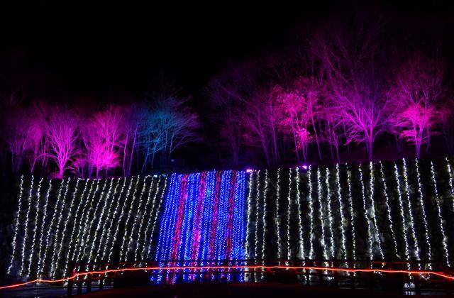 """Yamanakako Art Illumination """"FANTASEUM""""★19425ba2212068982"""
