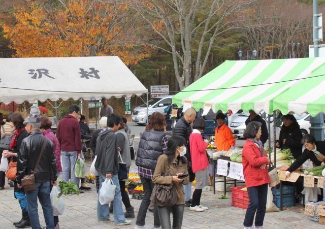 narusawa秋天的收獲節
