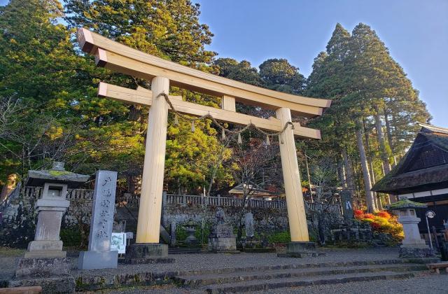 三本杉(戸隠神社中社)
