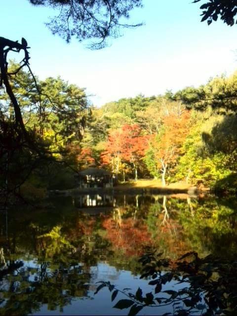 塩嶺御野立公園の紅葉