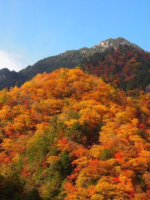 中房渓谷の紅葉