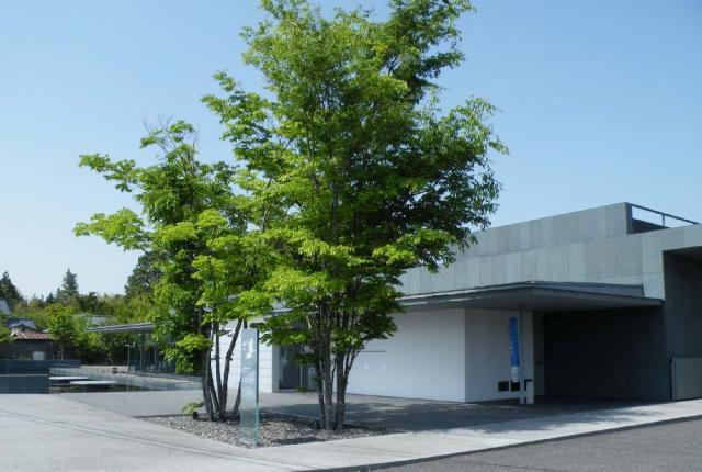 安曇野橋節郎記念美術館