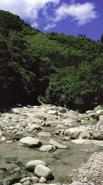 和合川渓谷