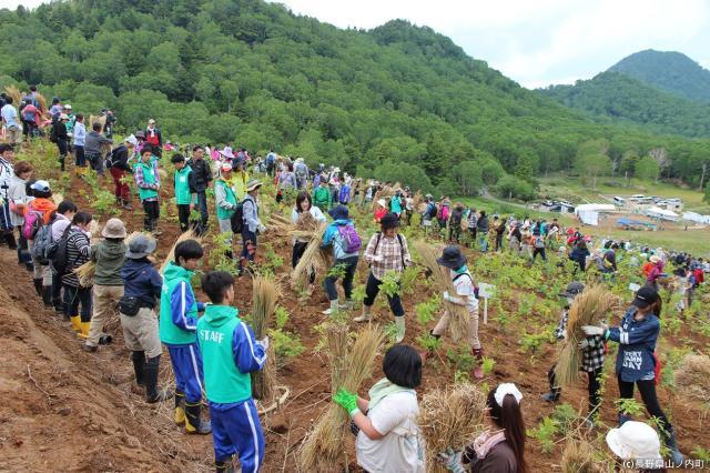 信州・志賀高原から始まる市川海老蔵「いのちを守る森づくり」ABMORI