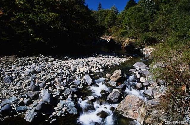 馬瀬川渓流