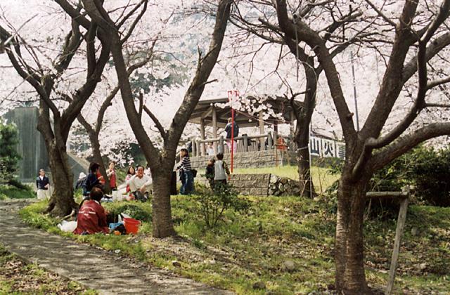 吉田出来山公園
