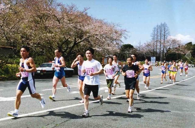 【大会廃止】第36回日本平桜マラソン