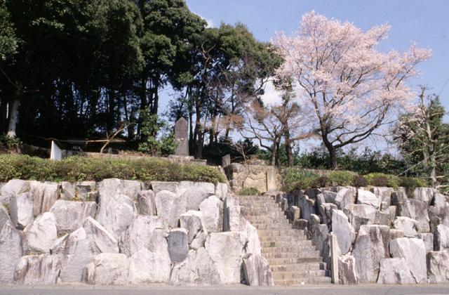 伝橘逸勢墓