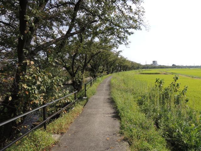 尾北自然歩道