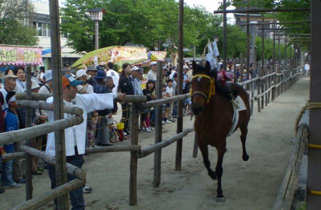 梅酒盛神事(馬まつり)