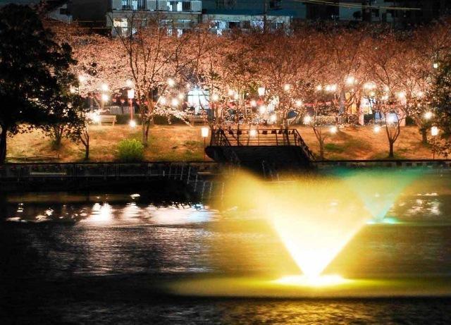 三崎水辺公園ライトアップ