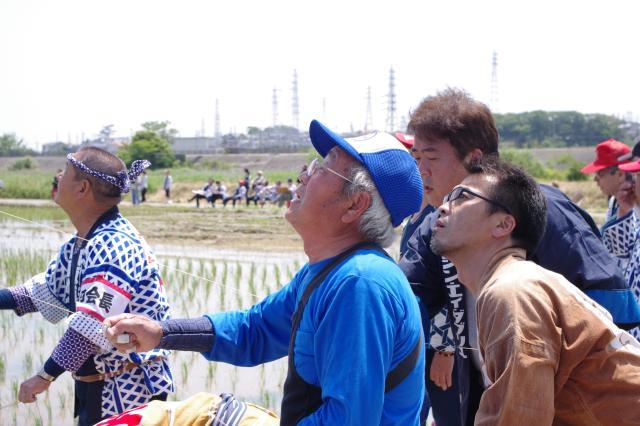 Tahara Kite Festival
