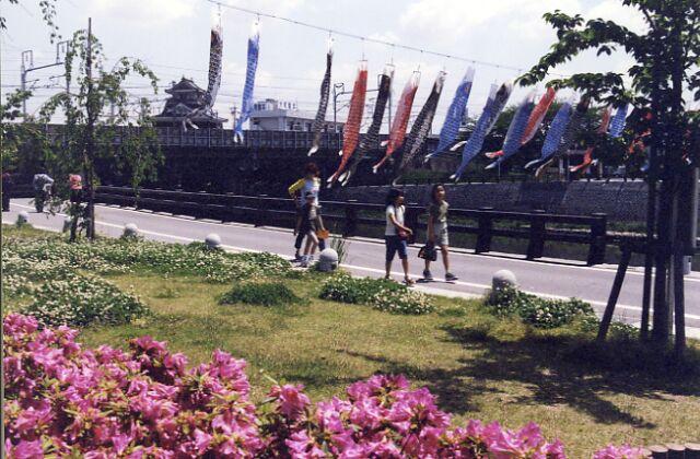 清洲公園のツツジ