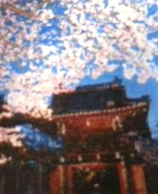 法応寺raivukonsato