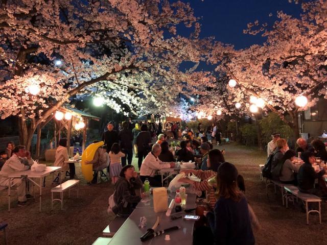 弁天宵桜祭