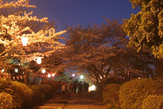 津偕楽公園春まつり