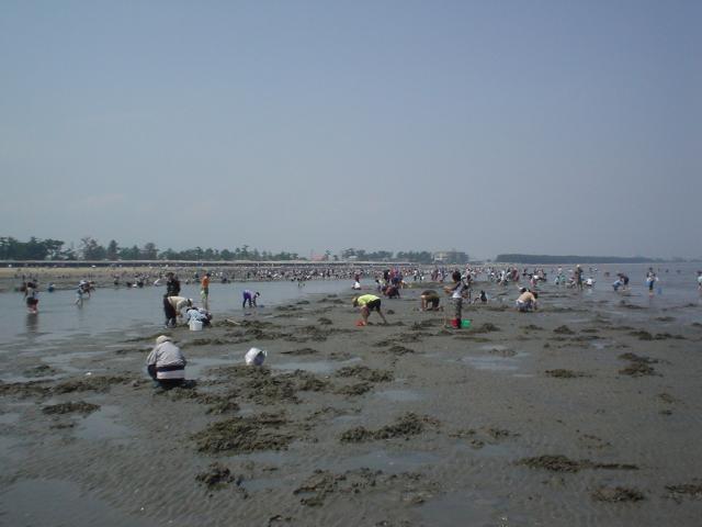 御殿場海岸(体験観光)