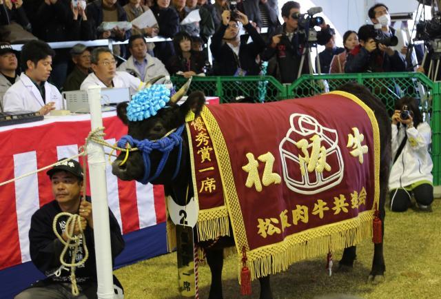 松阪牛節第68次松阪食用牛共進會