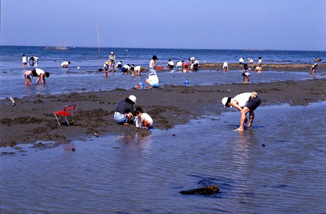 松名瀬海水浴場