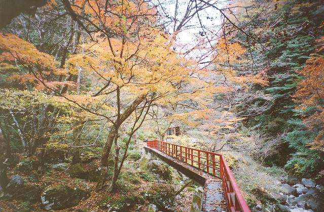 宮の谷渓谷遊歩道