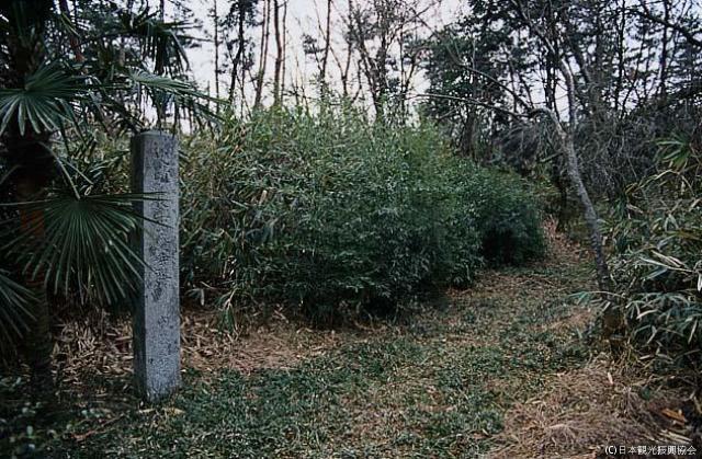 長楽山廃寺跡