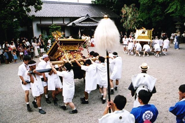 栽種的樹木神社祗園節日