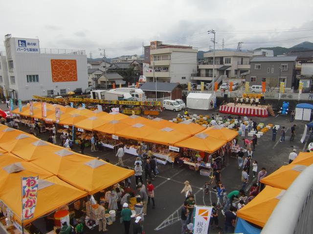 海濱橘子節