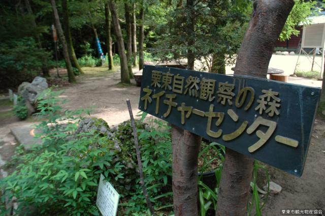 栗東自然観察の森