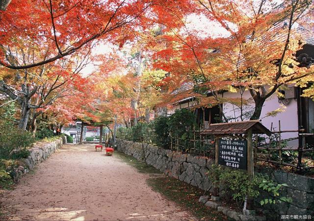 長寿寺(東寺)