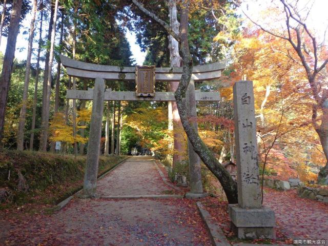 白山神社(滋賀県湖南市)