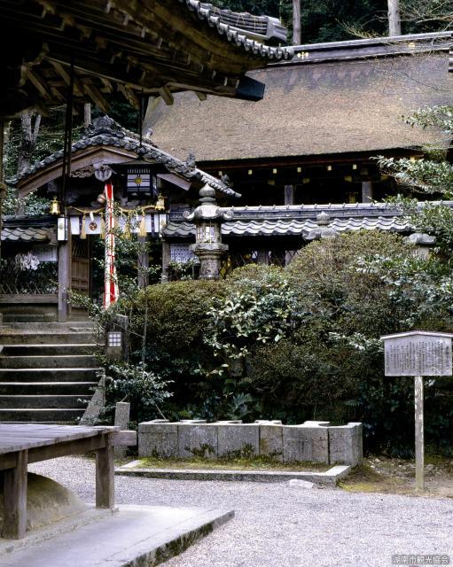 吉御子神社