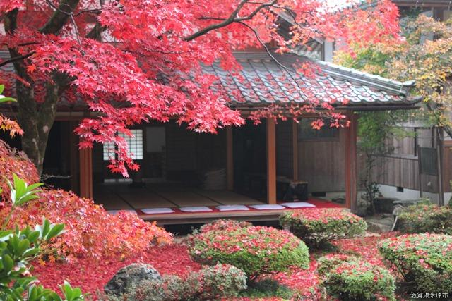 清瀧寺徳源院(庭園)