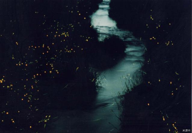 天の川ほたるまつり