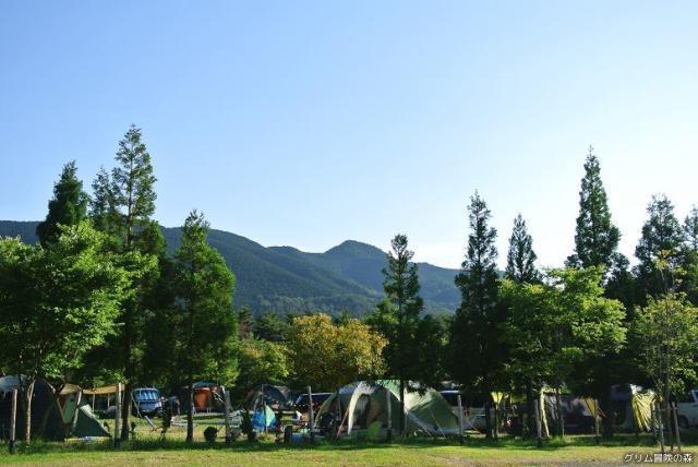 コテージ&オートキャンプ場「グリム冒険の森」
